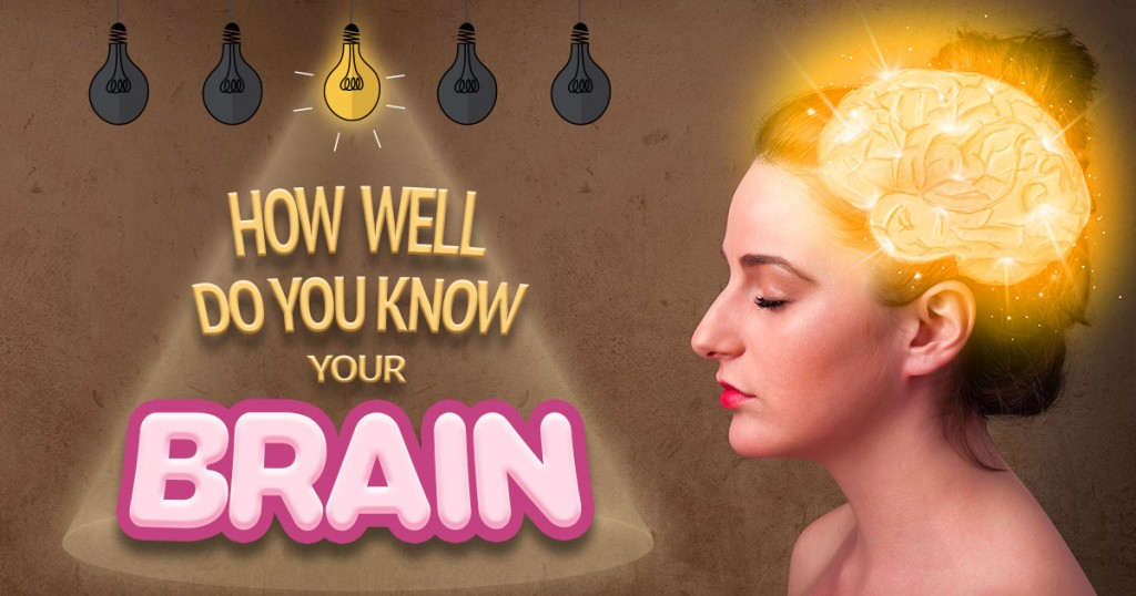 How Well Do You Know Your Brain?