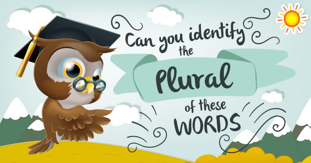 Can You Identify The Plural Of These Words?