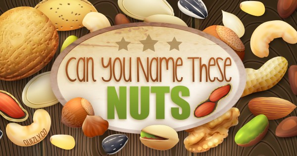 Can You Name These Nuts?