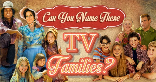 Can You Name These TV Families?