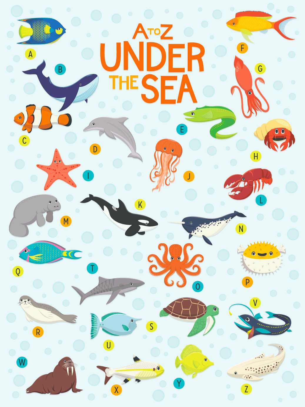 Can You Name These A-Z Sea Animals?