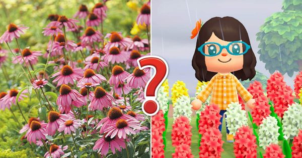 🌺 Only A Botanist Can Pass This Quiz On North American Plants — How Well Can You Do?