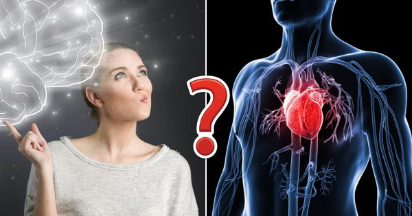 🫀 If You Score 12/15 On This Human Body Quiz, You Must've Been Cheating